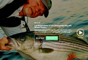 Preview the video Fall Striper Patterns